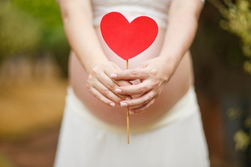 Aronija u trudnoći